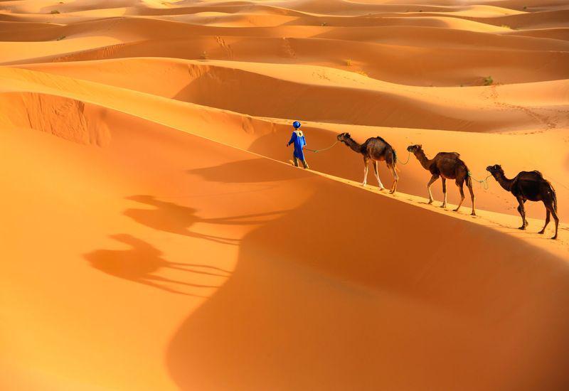 Séjour de 6 jours: oasis vallées et dunes